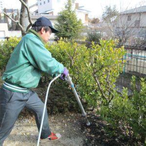 土の中に液体肥料を注入する弊社スタッフ