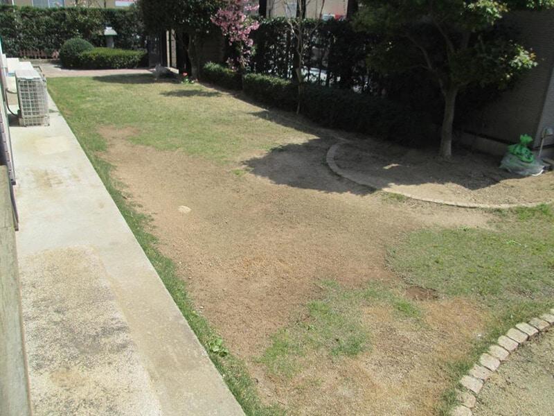 部分枯れが進んだ芝生のお庭