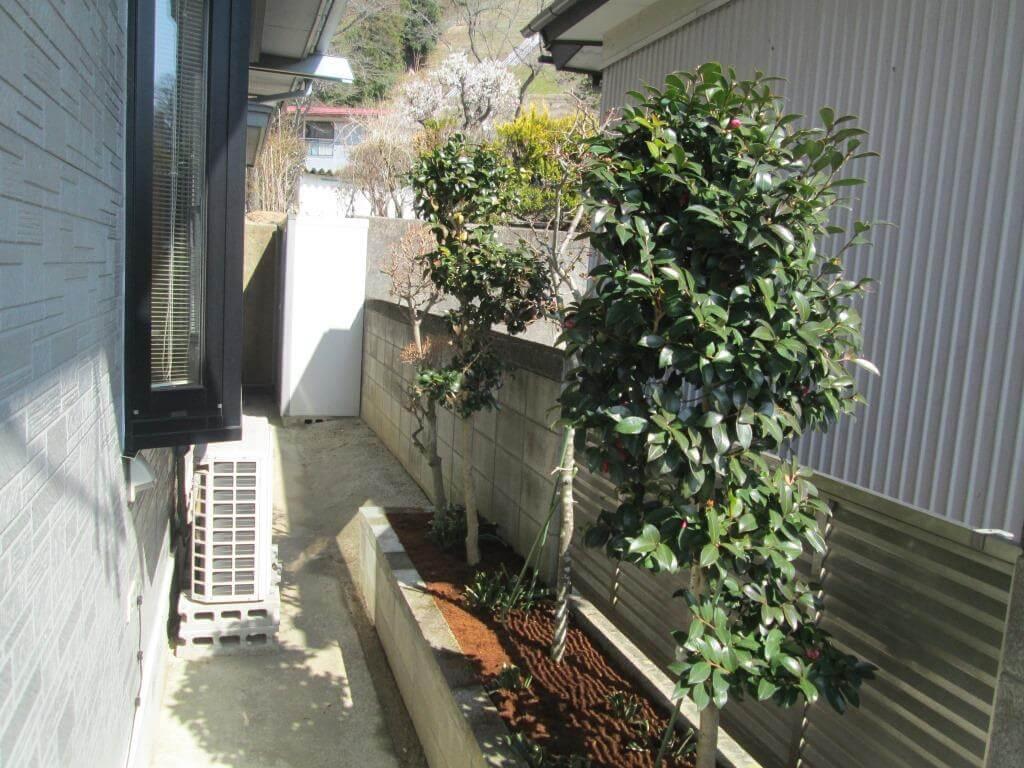 エアコン室外機及び風当たりによる乾燥防止をした庭木