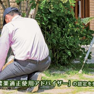 庭木のお手入れを行うトータルグリーンのスタッフたち