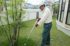 樹木の根に薬剤を散布するスタッフ