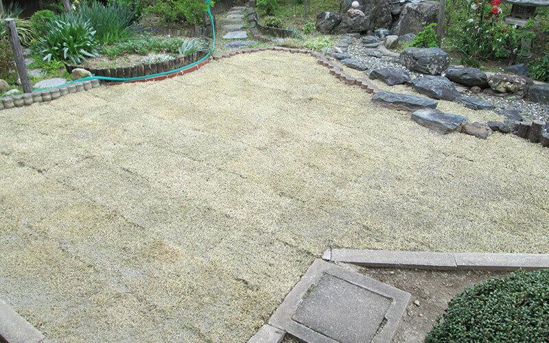 芝生を敷き詰めたばかりの庭