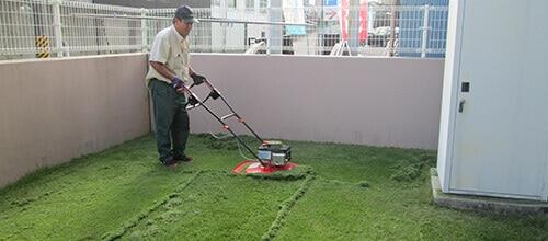 芝刈り機で芝生を整えるトータルグリーンのスタッフ