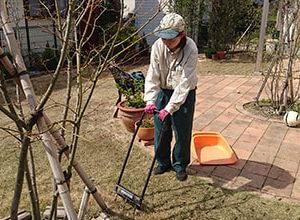 芝生の手入れを行うトータルグリーンのスタッフ