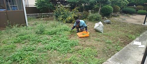 手作業で草抜きを行うトータルグリーンのスタッフ