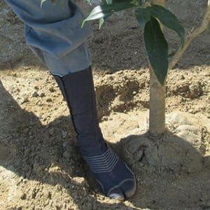 植樹するトータルグリーンのスタッフ