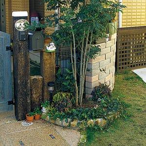 きれいに木々が整えられた玄関先
