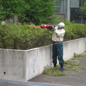 垣根を刈り込み整えるトータルグリーンのスタッフ
