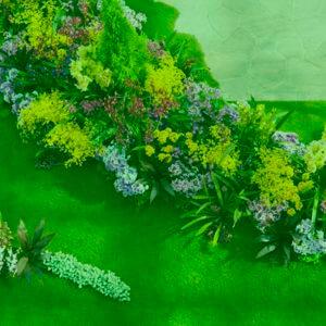 きれいに花が咲き乱れる庭