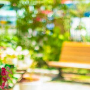明るい花が咲き乱れる庭