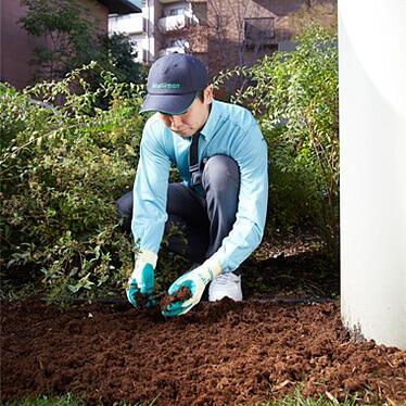 樹木のマルチングを行うトータルグリーンのスタッフ