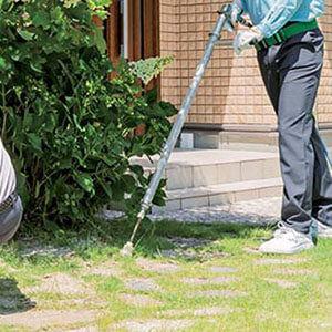 庭に薬剤をまくトータルグリーンのスタッフ